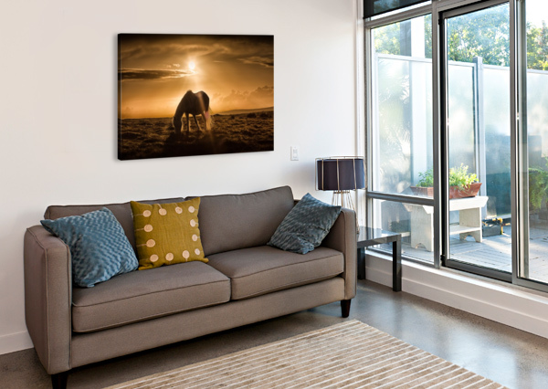 GOWER PONY AT SUNSET ON CEFN BRYN GOWER LEIGHTON COLLINS  Canvas Print