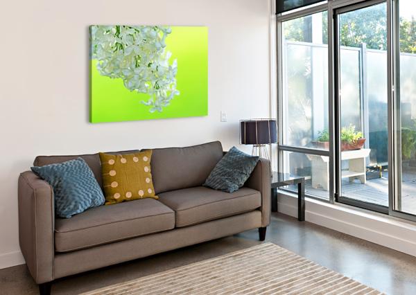 COOL WHITE LILAC ON LEMON LIME DEB OPPERMANN  Canvas Print