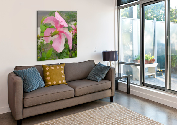 HIBISCUS HOLLIE  Canvas Print