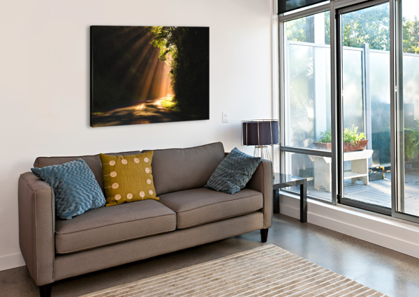 MORNING RAYS LUCAS MOORE  Canvas Print