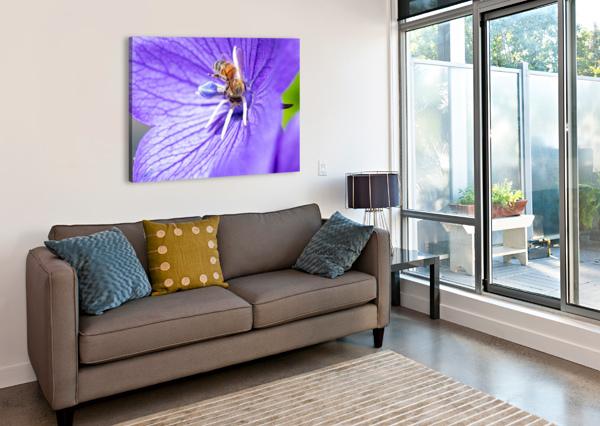 POLLINATING BEE CAMERAMAN KLEIN  Canvas Print