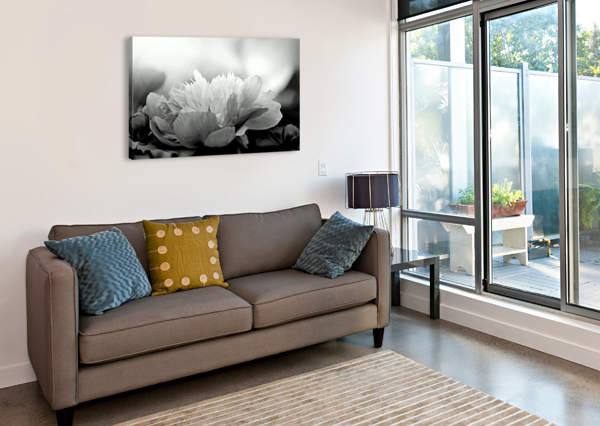 HEAVENLY PEONY BLACK AND WHITE JOAN HAN  Canvas Print