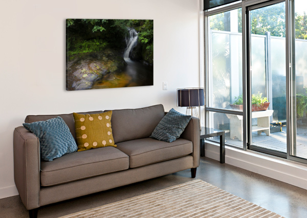 THE COLOURS OF BLAEN Y GLYN  LEIGHTON COLLINS  Canvas Print