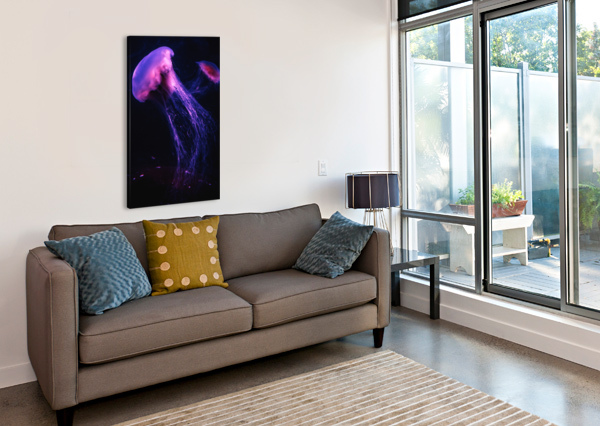 NEON JELLY MSNELL PHOTO  Canvas Print