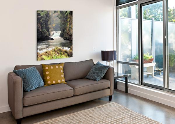 ROGUE RIVER CANYON BERN E KING PHOTOGRAPHY  Canvas Print