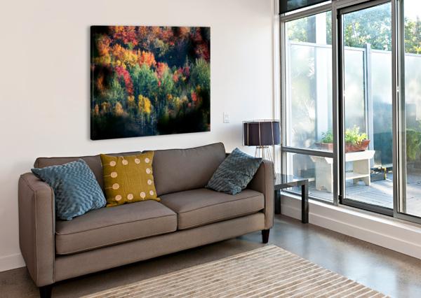 AUTUMN ABSTRACT VIEW LISA DREW MINNEAPOLIS PHOTO ARTIST  Canvas Print