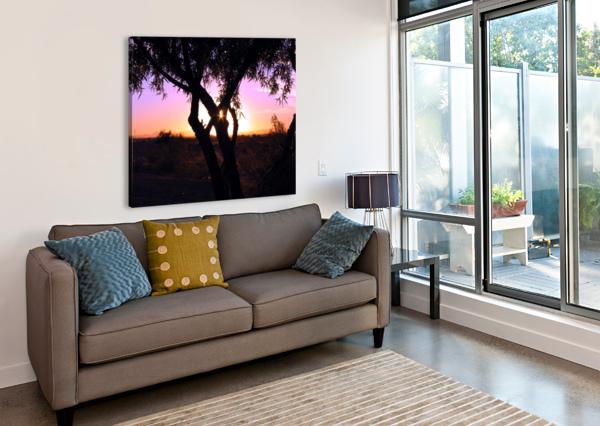 TAMARISK SUNSET BERN E KING PHOTOGRAPHY  Canvas Print