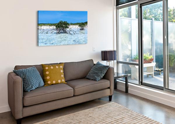 MANGROVES IN ESTUARY BROKEN COMPASS LIFE PHOTOGRAPHY  Canvas Print