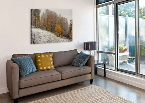 OCTOBER SNOW CANAAN VALLEY WVA THE FEATHER COTTAGE  Canvas Print
