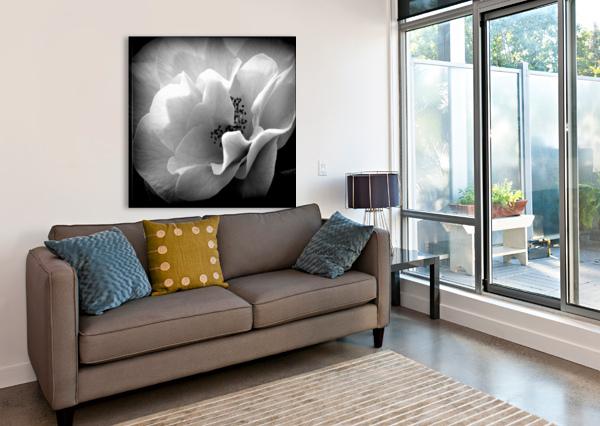 LINEN  VINKA PERZINA PHOTOGRAPHY  Canvas Print