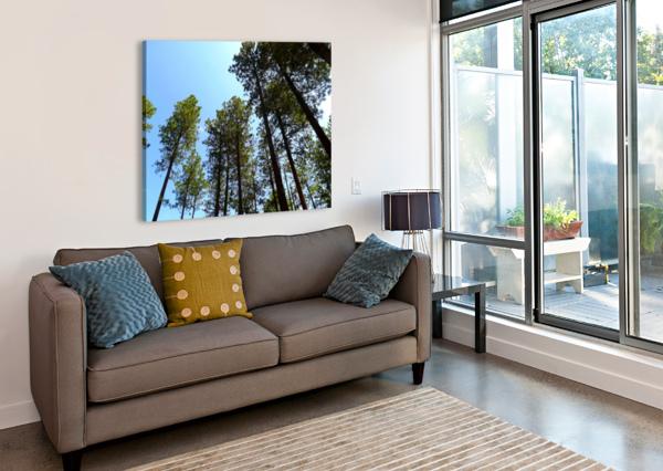 BLUE SKY ARIZONA PHOTOS BY JYM  Impression sur toile