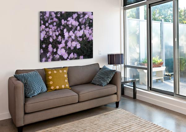 FLOWER GARDEN ARIZONA PHOTOS BY JYM  Canvas Print