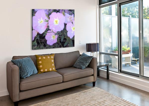 FLOWERS ARIZONA PHOTOS BY JYM  Canvas Print