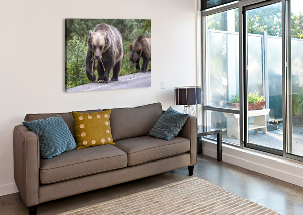 GRIZZLY BEAR - MOUTH FULL KEN ANDERSON PHOTOGRAPHY  Canvas Print