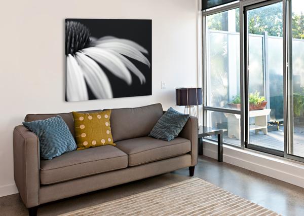 CONEFLOWER CLOSE-UP ASSAF FRANK  Canvas Print