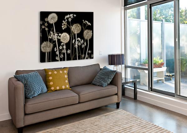MEADOW FLOWERS ASSAF FRANK  Canvas Print