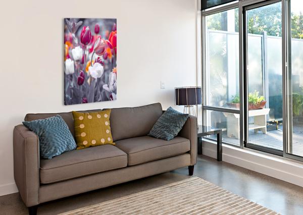 COLORFUL TULIP FLOWERS ASSAF FRANK  Canvas Print