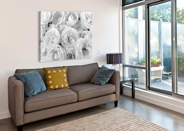 FULL FRAME OF ROSES ASSAF FRANK  Canvas Print