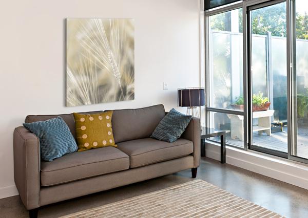 WHEAT CLOSE-UP ASSAF FRANK  Canvas Print