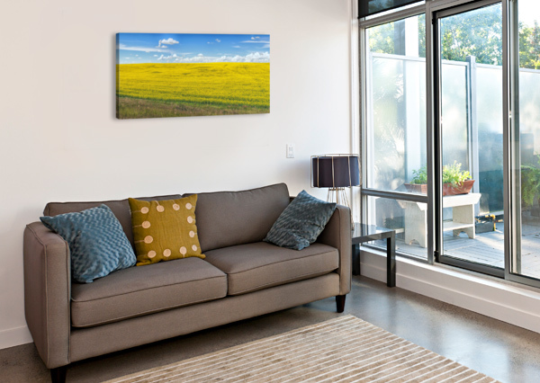 BLUE SKY AMAZING VANCOUVER & BEAUTIFUL BRITISH COLUMBIA BY JORGE LIGASON  Canvas Print