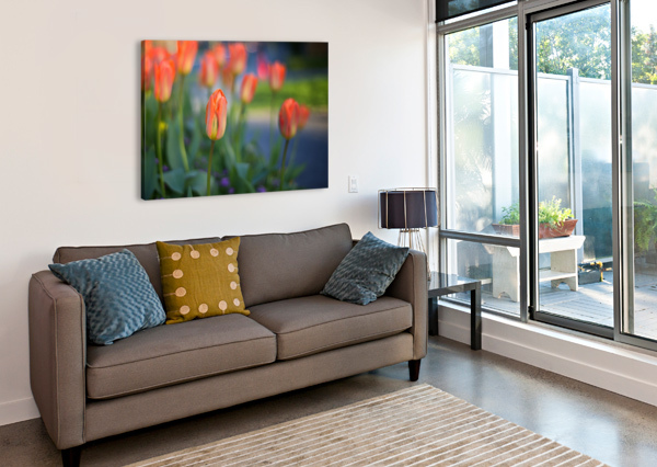TULIPS FOR YOU AMAZING VANCOUVER & BEAUTIFUL BRITISH COLUMBIA BY JORGE LIGASON  Canvas Print