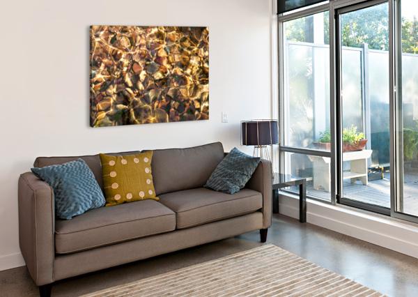 REFLEX - X CARLOS WOOD  Canvas Print