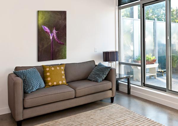 12494253_10153497339628558_1614706987_O DIDIER MUYA - FINE ART PHOTOGRAPHY  Canvas Print