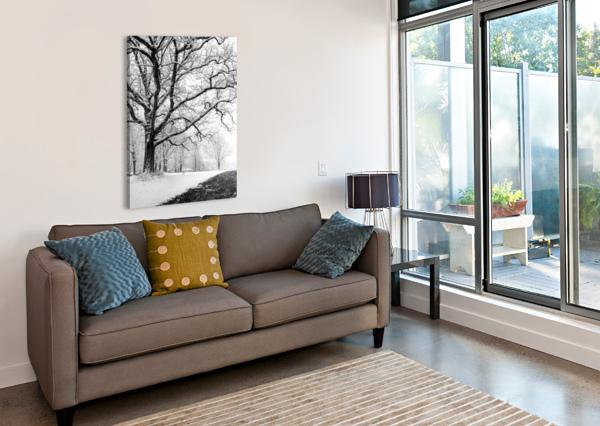 FIRST SNOWFALL DAN FLEURY  Canvas Print