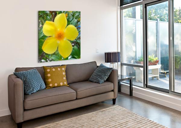 PERFECT 360 STUDIOS  Canvas Print
