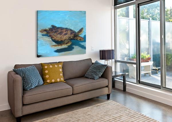 SEA TURTLE - NATURAL WORLD KIDS GALLERY 360 STUDIOS  Canvas Print