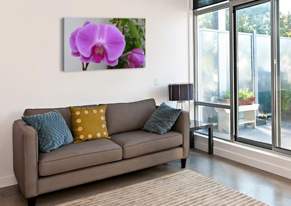 PURPLE 360 STUDIOS  Canvas Print