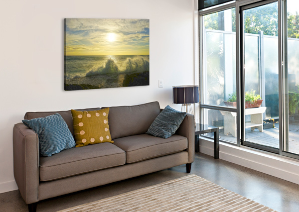 SWIRL 360 STUDIOS  Canvas Print