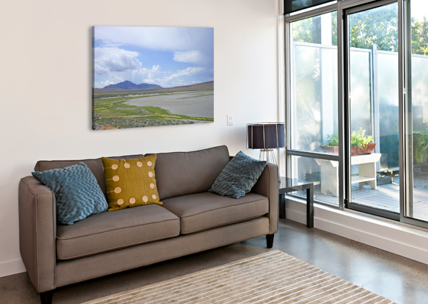 THE GREAT SALT LAKE 3 OF 7 1NORTH  Canvas Print