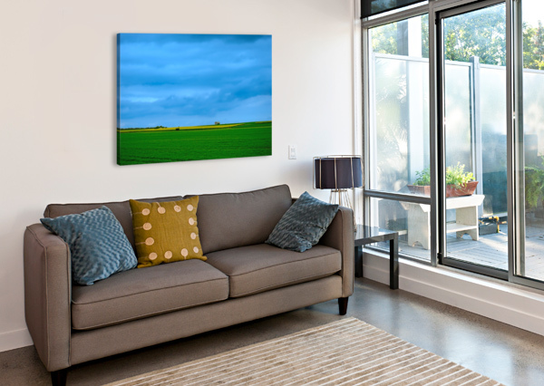 PAINTED FIELDS - 2017 GALLERY ARTWORK OF THE YEAR - MINIMALISM 1NORTH  Canvas Print