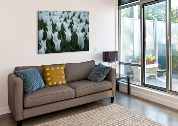 WHITE 360 STUDIOS  Canvas Print