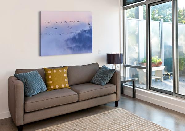 SNOW GEESE 1X  Canvas Print