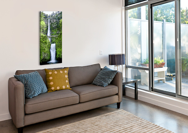 I DREAMED OF WATERFALLS 360 STUDIOS  Canvas Print