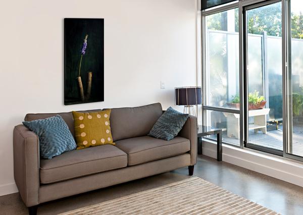 SIMPLICITUDE DANIEL THIBAULT ARTISTE-PHOTOGRAPHE  Canvas Print