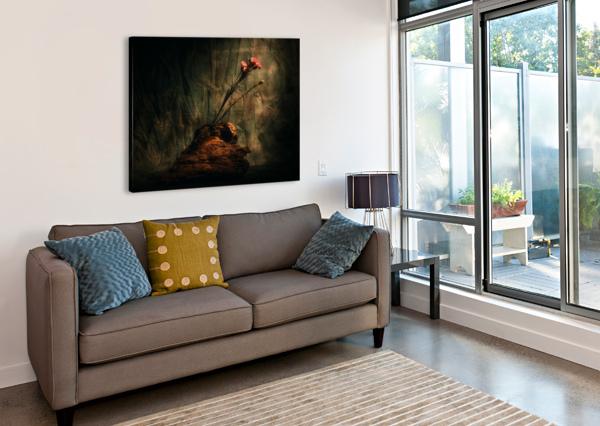 MONTAGNE ET ZEN DANIEL THIBAULT ARTISTE-PHOTOGRAPHE  Canvas Print