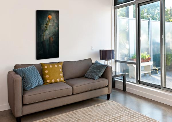ZEN 2 DANIEL THIBAULT ARTISTE-PHOTOGRAPHE  Canvas Print