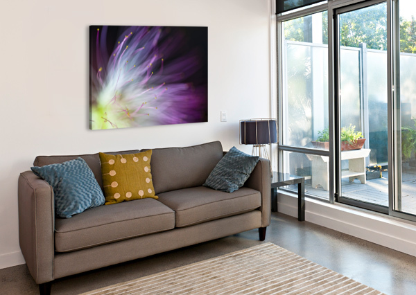 THE WILL-O-THE-WISP 1X  Canvas Print