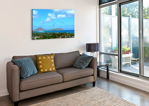SCENIC HAWAII 24  Canvas Print