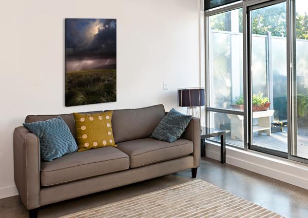 SUMMER LIGHTS BY FRANZ SCHUMACHER  1X  Canvas Print