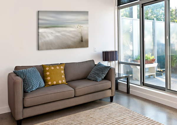 EARS IN THE SEA 1X  Canvas Print