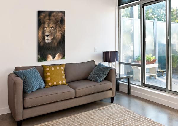 LION WESLEY ALLEN SHAW  Canvas Print