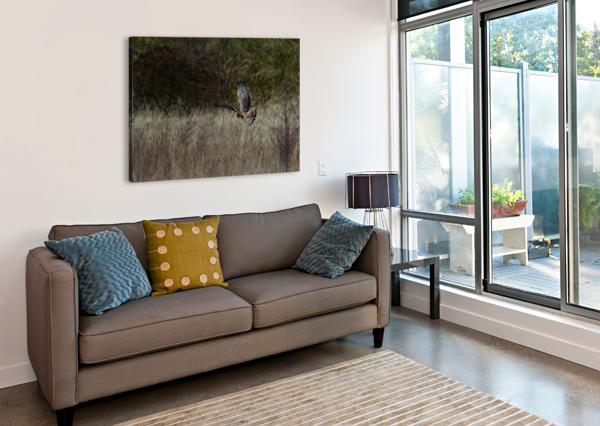 WESLEY ALLEN SHAW 01906 WESLEY ALLEN SHAW  Canvas Print