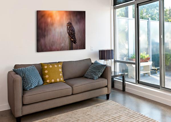 OWL WESLEY ALLEN SHAW  Canvas Print