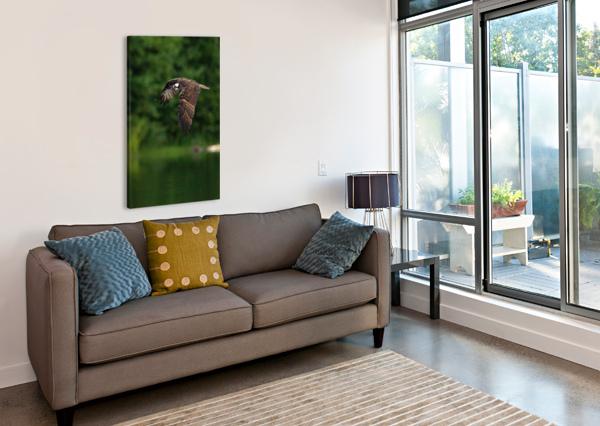 WESLEY ALLEN SHAW 00460 WESLEY ALLEN SHAW  Canvas Print