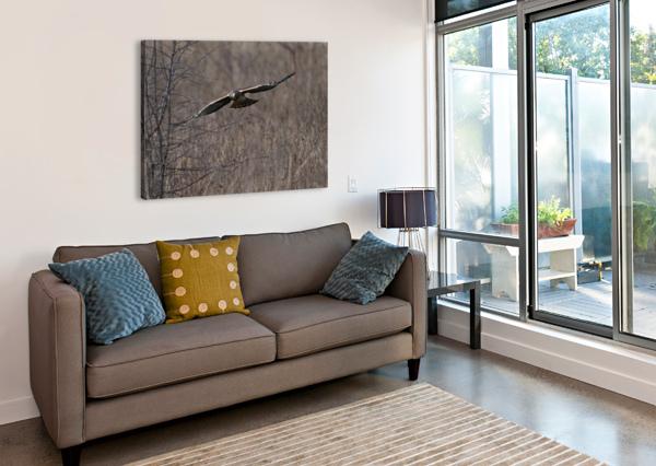 WESLEY ALLEN SHAW 02102 WESLEY ALLEN SHAW  Canvas Print