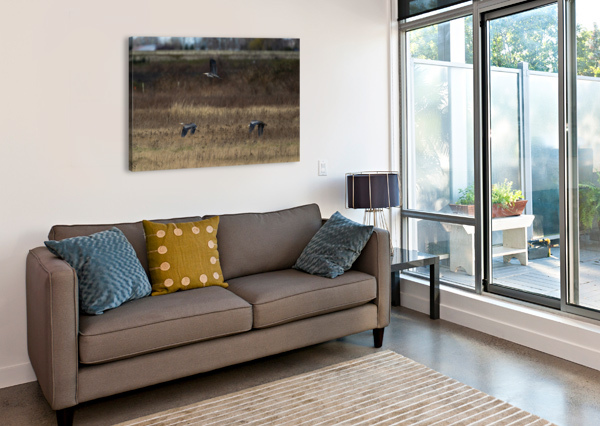 WESLEY ALLEN SHAW 01943 WESLEY ALLEN SHAW  Canvas Print